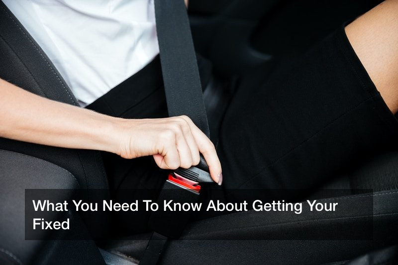 What You Need To Know About Getting Your Fixed